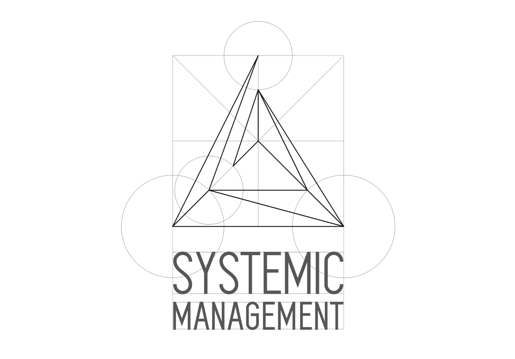 Systemic Management © 2016 Joana Regojo (www.joanaregojo.com)